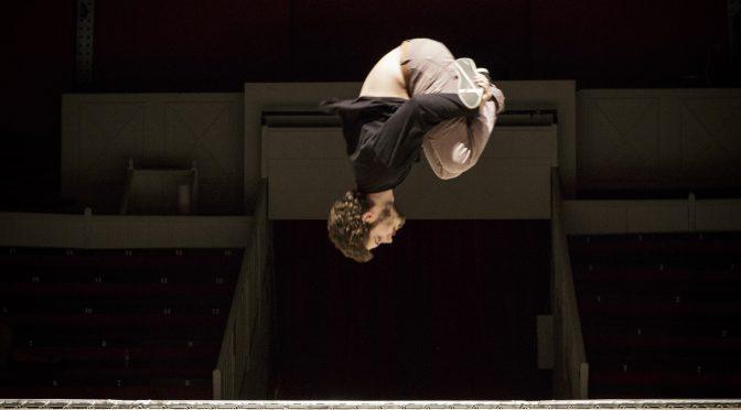 Appel à contribution «Cirque et approches comparées. Professionnalisations en question : enjeux, identité, processus»