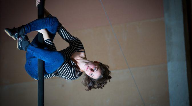 Journée d'étude «Cirque et approches comparées. Professionnalisations en question : enjeux, identité, processus»